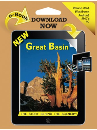 Great Basin - The Story Behind the Scenery  eBook