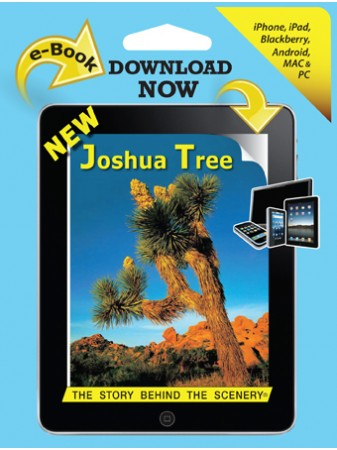 Joshua Tree - The Story Behind the Scenery  eBook
