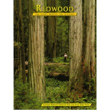 Redwood - The Story Behind the Scenery