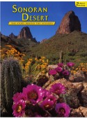 Sonoran Desert - The Story Behind the Scenery
