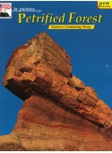 Petrified Forest - In Pictures - Nature's Continuing Story