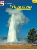 Yellowstone - In Pictures - FRENCH Translation Insert