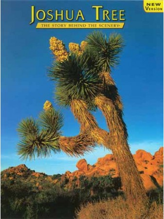 Joshua Tree - The Story Behind the Scenery